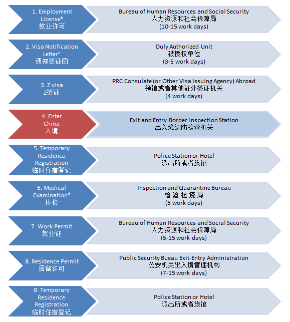 China Z (work) visa application flow chart