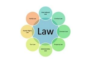 Different areas of specialization for a lawyer that you should know