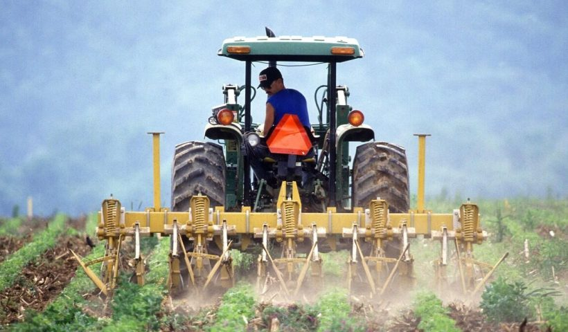 intellectual property for farmers