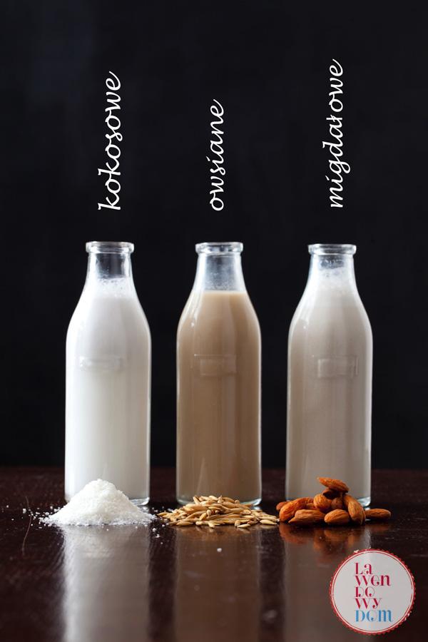 domowe mleko roślinne_3