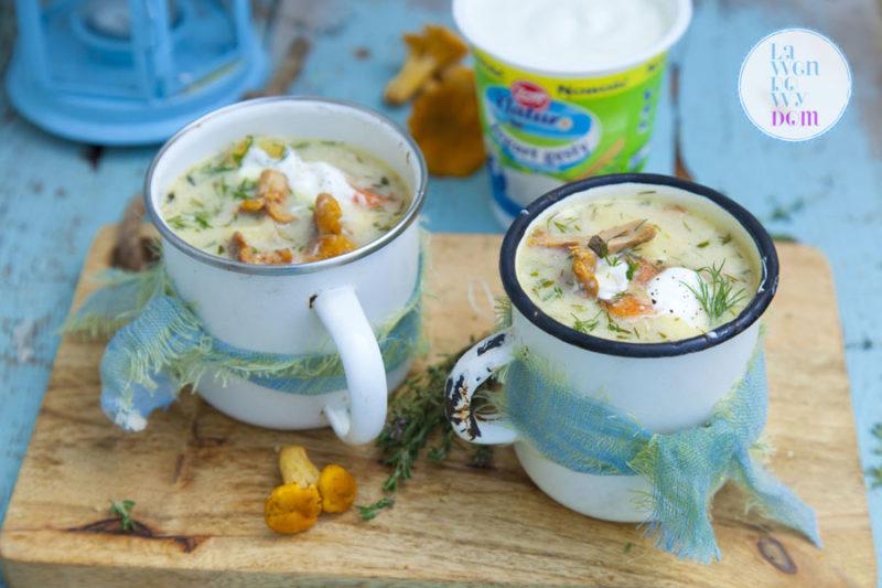 zupa-ze-swiezych-grzybow-zott-przepis_05