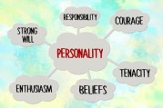 Personality traits in law firm