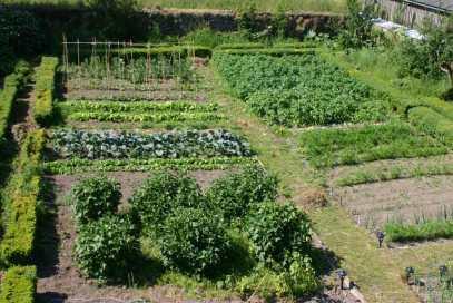 small-kitchen-garden-design-328