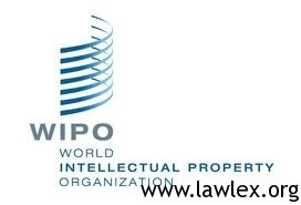 How To Intern For The World Intellectual Property Organization Wipo