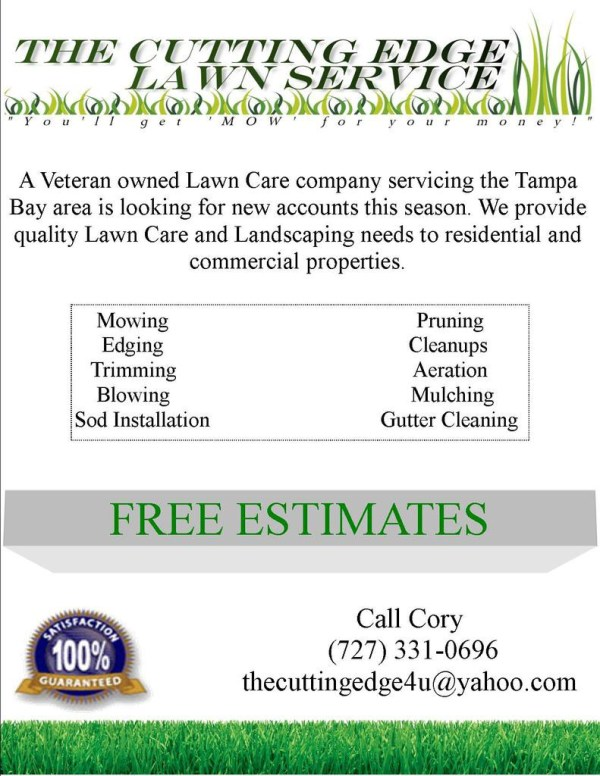 spring lawn care flyer and direct