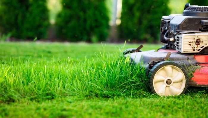 Remington Lawn Mower Reviews