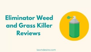 Eliminator Weed and Grass Killer Reviews