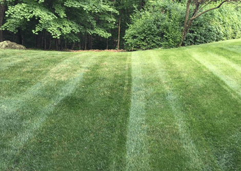 LAWN CARE | SHERMAN, CT | LAWN MOWING SERVICES | (607) 435-1731