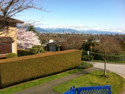 Pruning and hedge trimming Vancouver