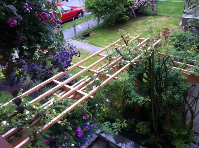 Rose arbour construction Vancouver