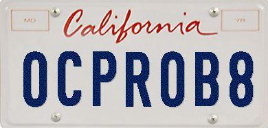 OCPROB8.com - Orange County Probate for Estates with Guns