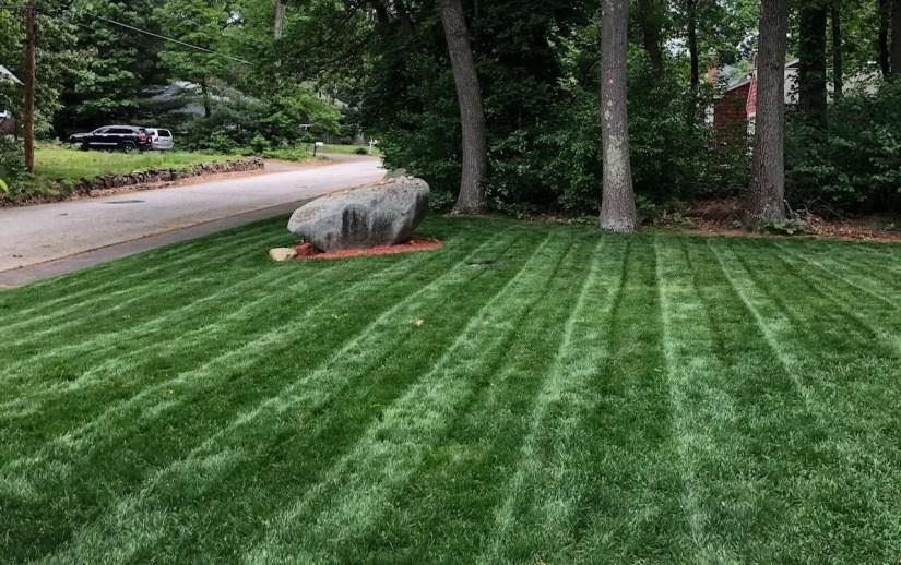 frontyard-rock-2018-green-lawn-2