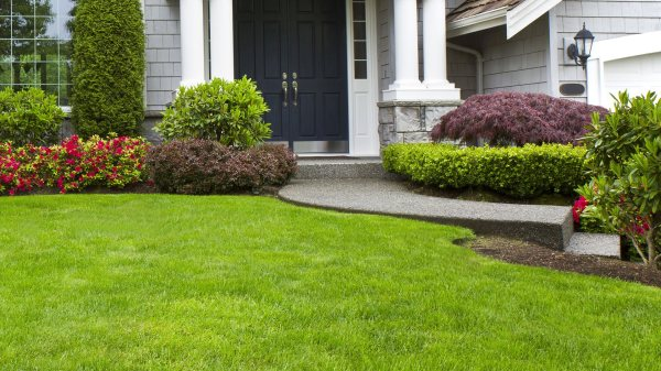 lawn care landscaping and mulching