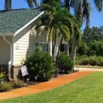 Landscape Maintenance Sebastian, FL - Before