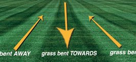 How To Stripe The Lawn As A Football Field
