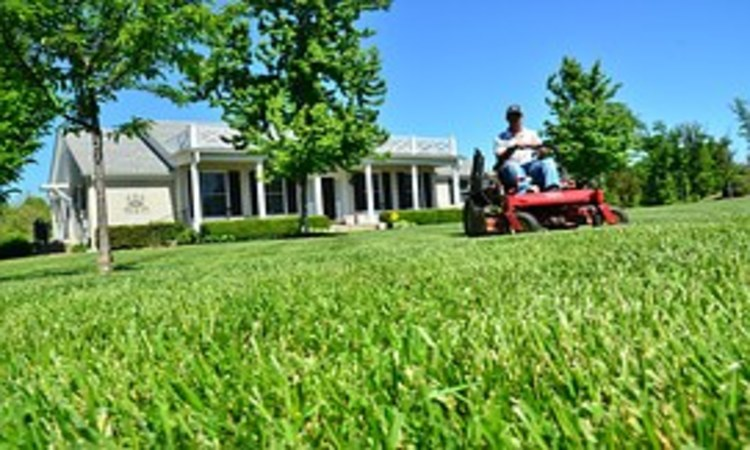 Troy-Bilt 420cc OHV 30-Inch Premium Neighborhood Riding Lawn Mower Review: The Best Riding Lawn Mower for the Money