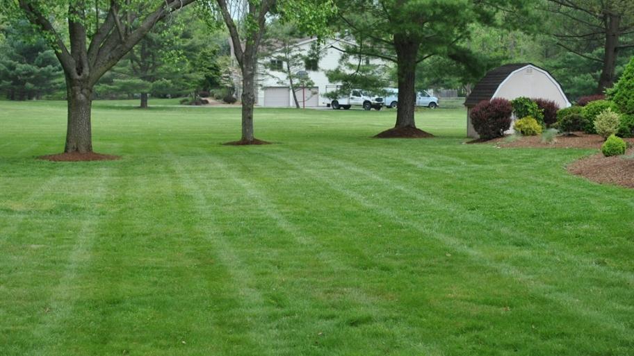 Best Lawn Fertilizer Method: Pick Yours! - Lawn Tools Guide