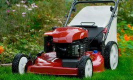 How to Choose the Perfect Lawn Mower