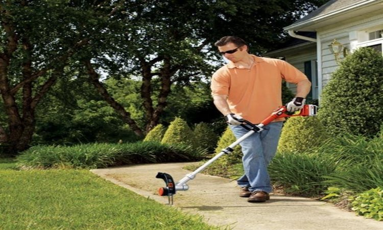 Toro 51480 Corded Electric Trimmer/ Edger Review