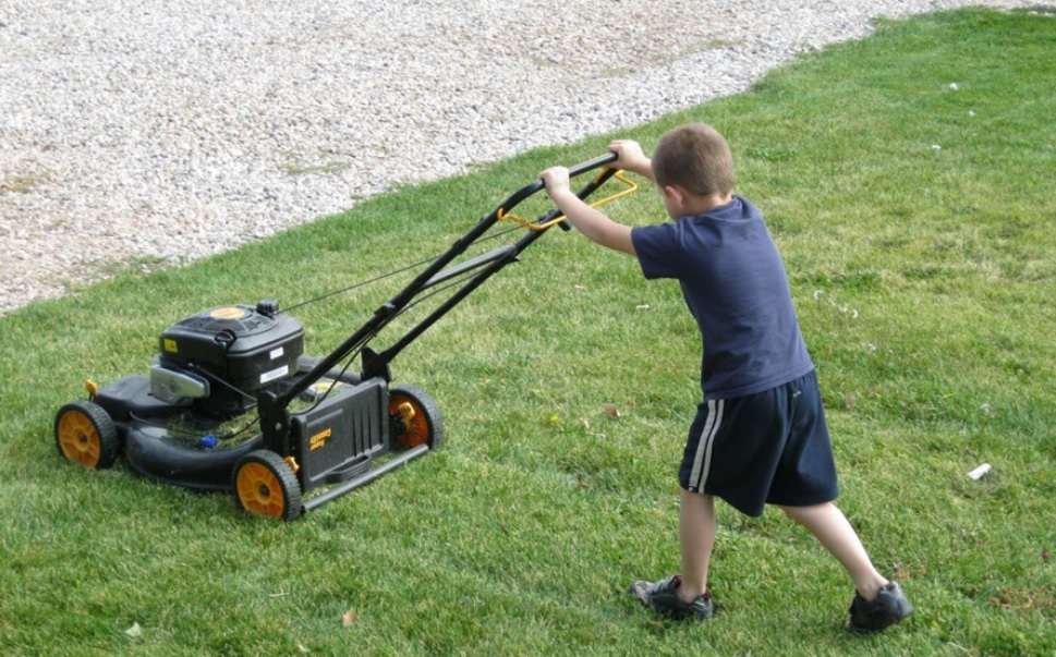 How To Choose The Best Push Lawn Mower Lawn Tools Guide