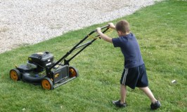 How to Choose the Best Push Lawn Mower