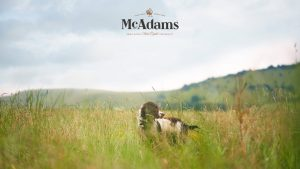 McAdams Logo Pet Food Packaging Law Print
