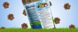 Little Big Paw Packaging Law Print Pack