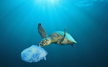Global Plastics Problem