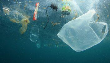 Packaging polluting the ocean.