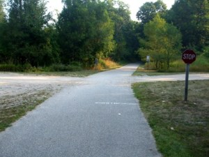 White Pine Trail at Herrington Crossing