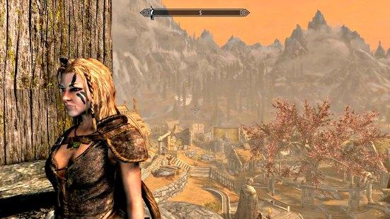Dragonsreach view