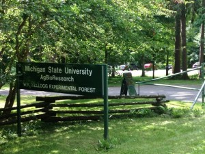 MSU's Kellogg Forest headquarters offers restrooms, a picnic area, and parking.