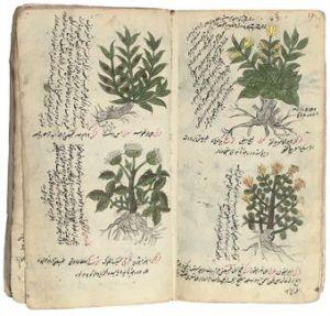 Ottoman empire medicinal journal