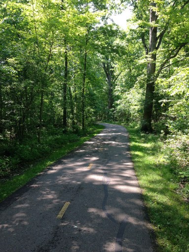 Forested bike path in Lake Erie Metropark