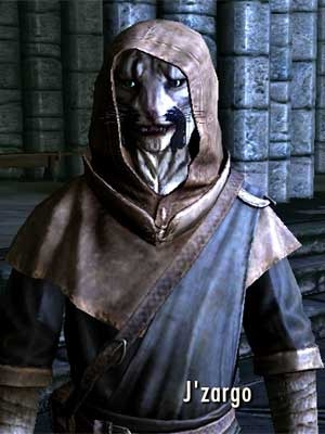 Picture of J'zargo of Elsweyr, a character from Skyrim
