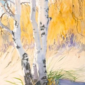 "Sherry Adams Foster, ""Beach Birches"", watercolor, 26x36,$500"