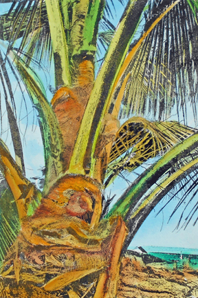 """Laura Whitesides Host, """"Captain Cook Palm"""", Hand-painted Solar Plate Etching, 18 x 16, $160"""