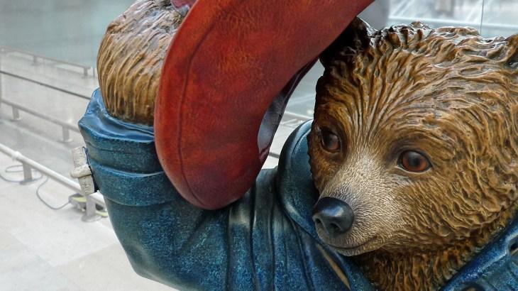 Paddingtion Bear
