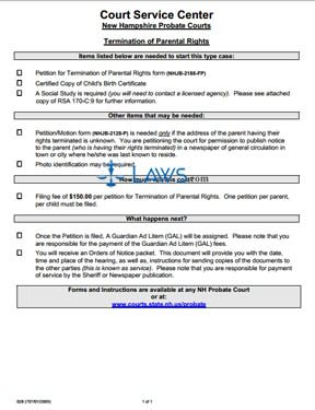 028 Termination of Parental Rights  New Hampshire Forms   Lawscom