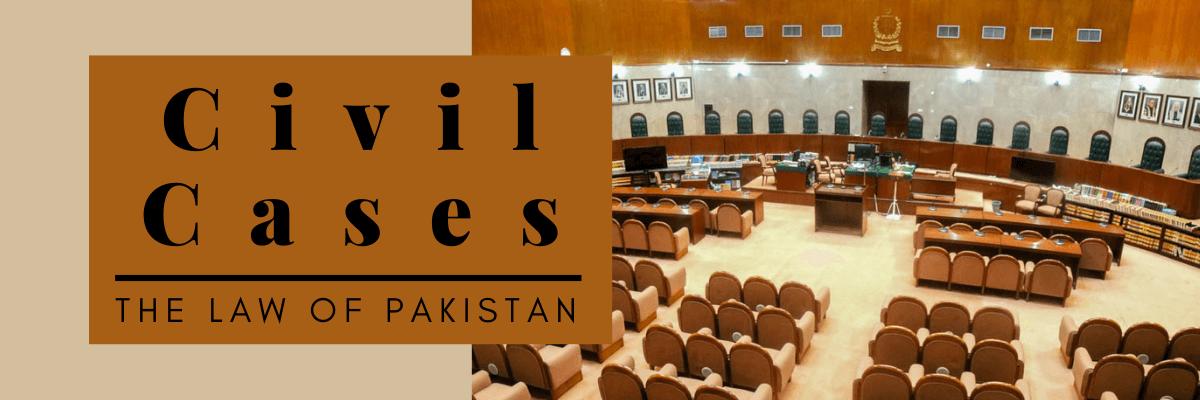 civil cases and litigation