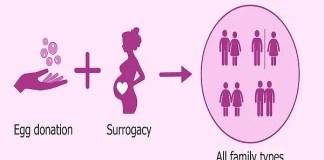 Surrogacy Arrangements