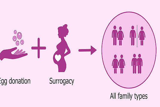 Surrogacy Arrangements