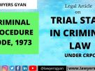 trial stage in criminal law