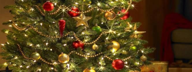 Árbol de navidad: ¿De dónde viene esta tradición?