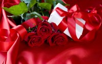 Rose-Day-Text-SMS-And-Messages-In-Hindi-2014