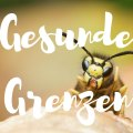 Die Botschaft der Wespe: Gesunde Grenzen setzen