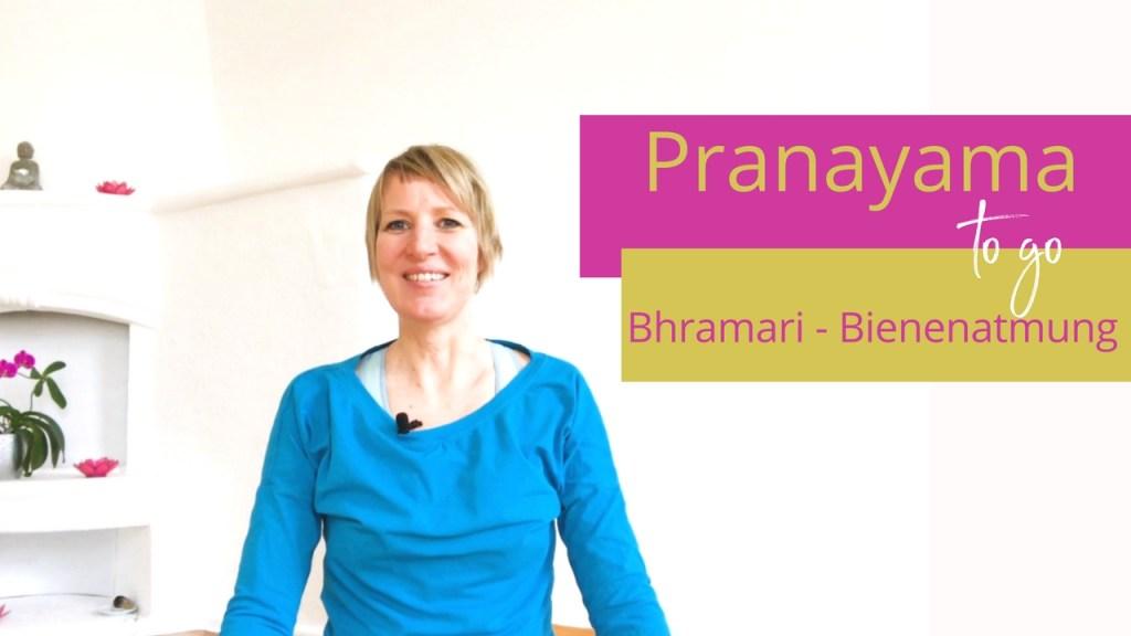 Bhramaria, der Atem der summenden Biene - Yoga Video