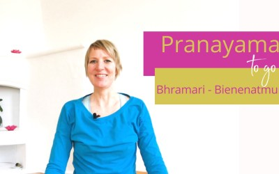[Yoga-Video]: Komm in deine eigene Schwingung mit Bhramari, der Bienen-Atmung