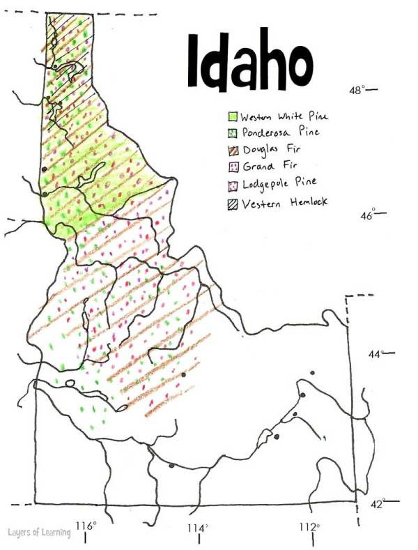 U.S. state maps to print and color. This is Idaho showing where certain species of trees grow.