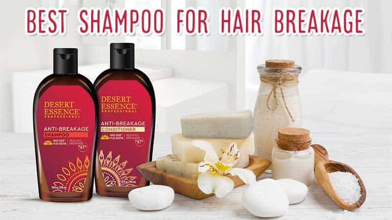 Top 8 Best Shampoo For Hair Breakage That Save Your Tresses